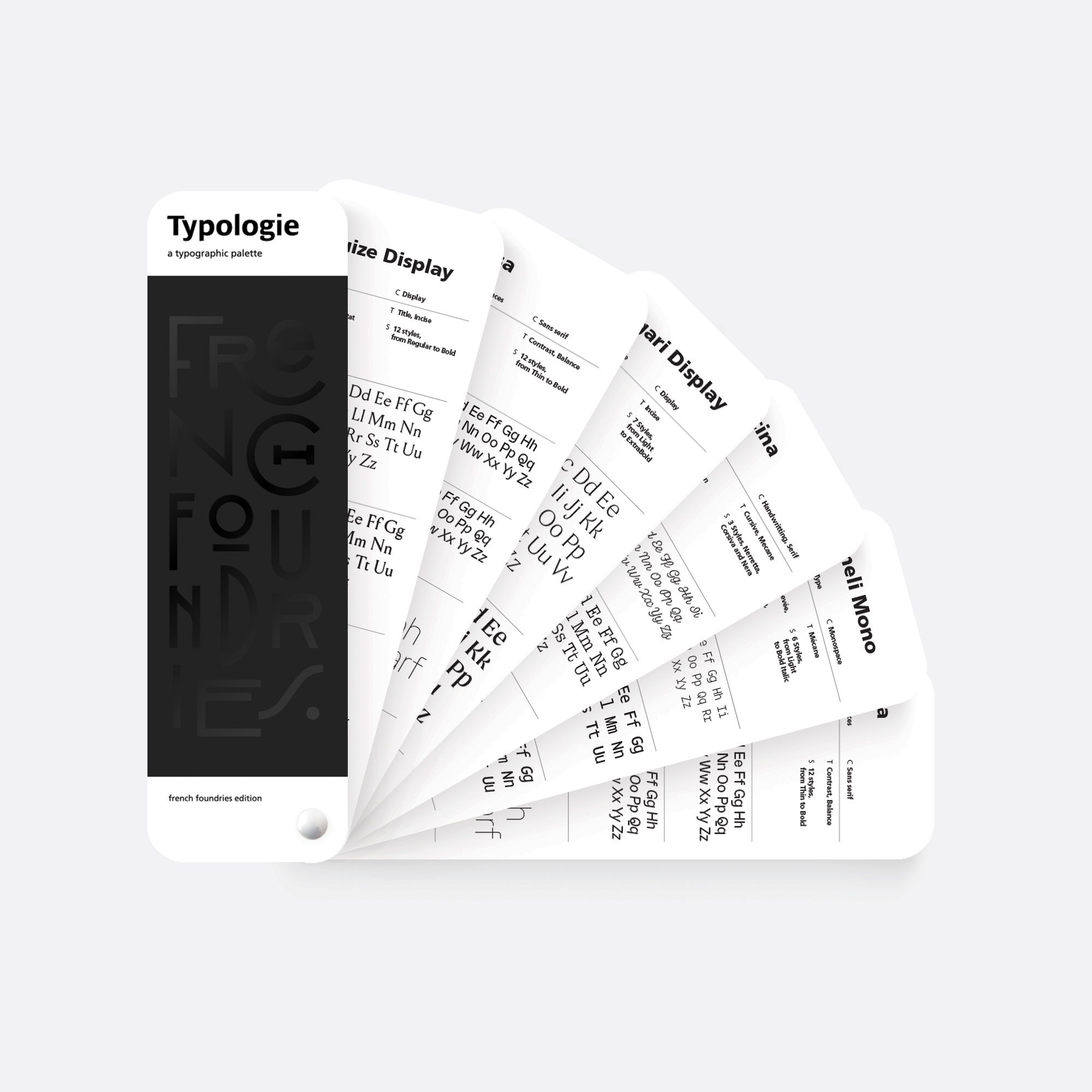 typologie square